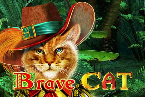 Brave Cat